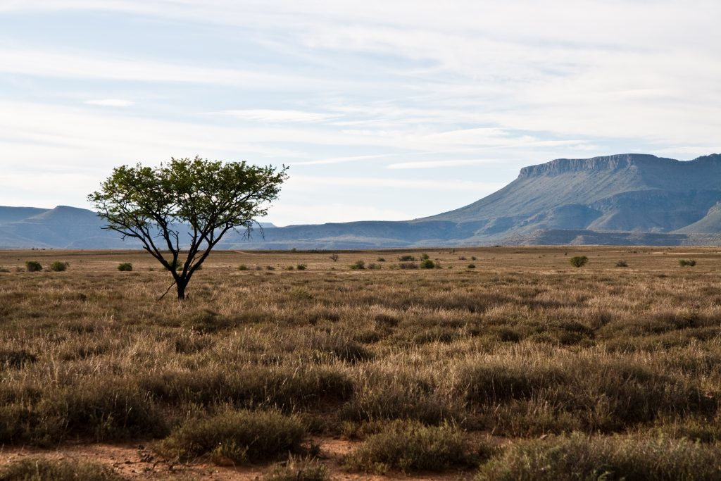 South Africa - This best countries to visit It includes the easiest countries to travel to and the best travel destinations for first-timers so that you can start your travel life slowly,